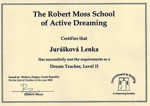school of active dreaming II