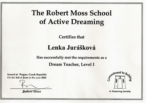 school of active dreaming